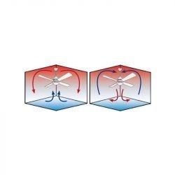 Sargent Grafit. DC Deckenventilator mit LED Licht und Fernbedienung, 116 cm, leistungsstark und effizient, mit Timer und Rückwär